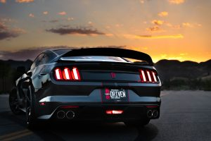 Read more about the article Ford Mustang Vehicles Are Losing Their Shine. Why Is That The Case?